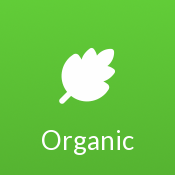 Screenshot for Organic by ThemeTree