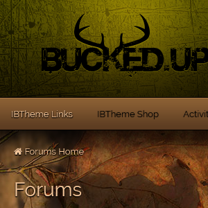 Screenshot for Bucked Up 4.2.x